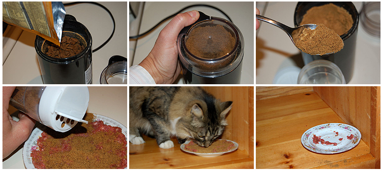 Loss of interest tcfeline raw cat food the forumfinder Images