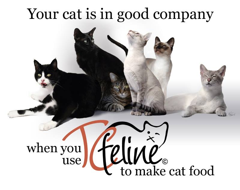 TCfeline_raw meat cat food_my cats