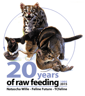 20 years of raw feeding cats_1995-2015_TCfeline website