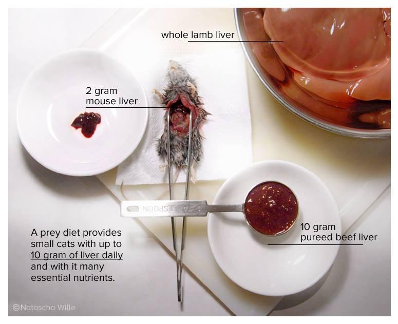 TCfeline_raw meat cat food_liver